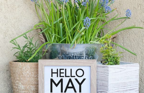 May Flowers Are Here!